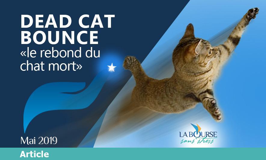 Le Dead Cat Bounce ou le rebond du chat mort